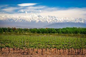 Ubytování Mendoza, Argentina