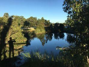 Ubytování Clayton, Austrálie