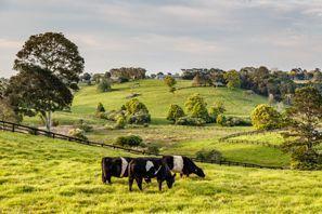 Ubytování Coopers Plains, Austrálie