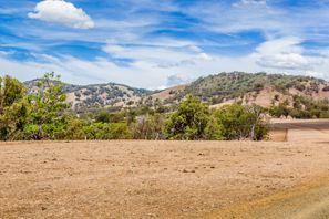 Ubytování Muswellbrook, Austrálie