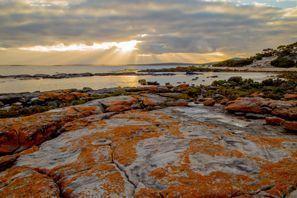 Ubytování Orange, Austrálie