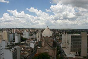 Ubytování Araraquara, Brazílie