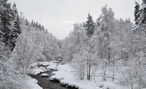 Ubytování Nurmijarvi, Finsko