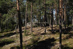 Ubytování Paimio, Finsko