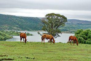 Ubytování Estcourt, Jižní Afrika