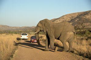 Ubytování Klerksdorp, Jižní Afrika