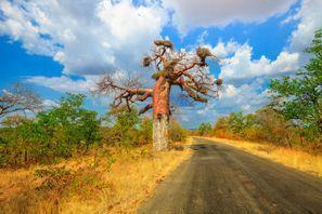 Ubytování Makhado, Jižní Afrika