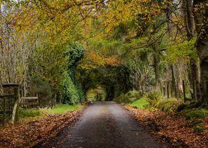 Ubytování Omagh, Severní Irsko