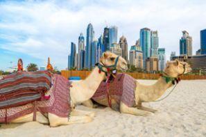 Levné Ubytování Spojené Arabské Emiráty